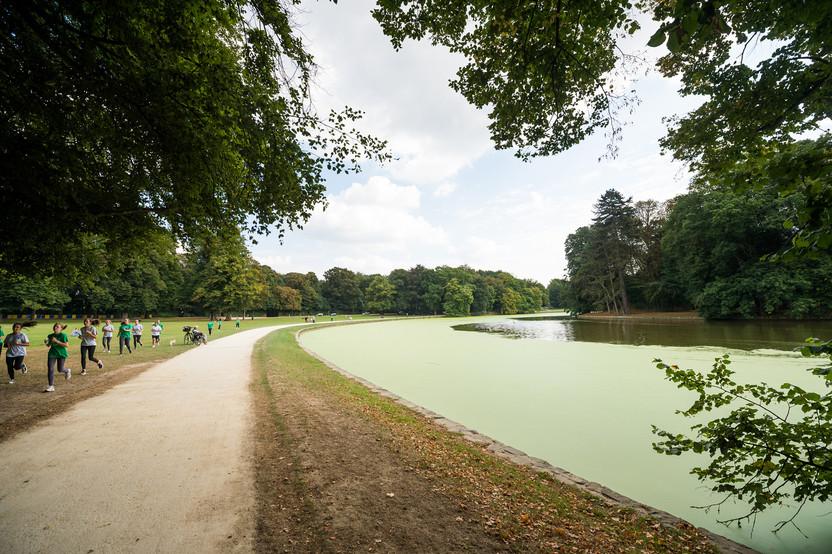 Universalis Park omgeving